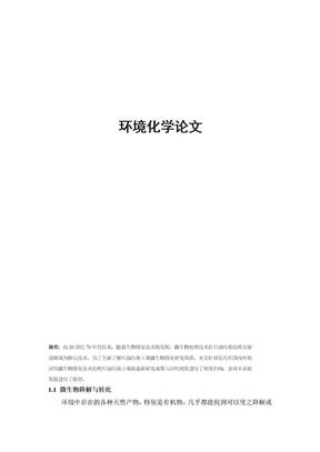 环境化学论文.doc