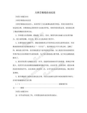 大班尝葡萄活动反思.doc