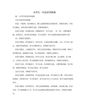 小学生一句话评语集锦.doc