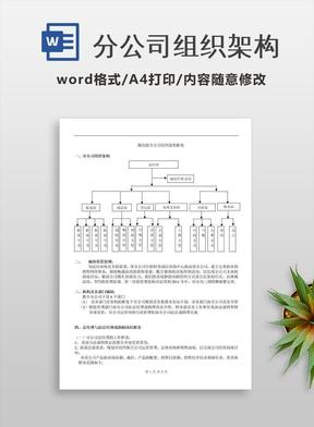 分公司组织架构
