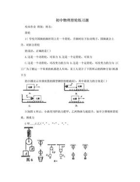 初中物理滑轮练习题.doc