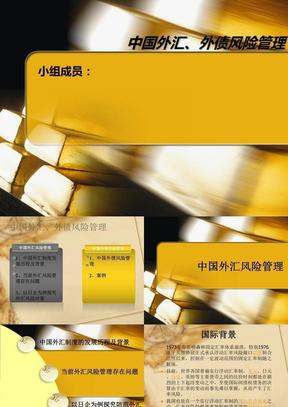 (新版)中国外汇外债风险管理(正式)3.ppt