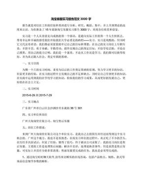 淘宝客服实习报告范文3000字.docx