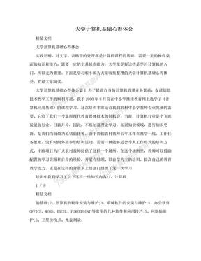 大学计算机基础心得体会.doc