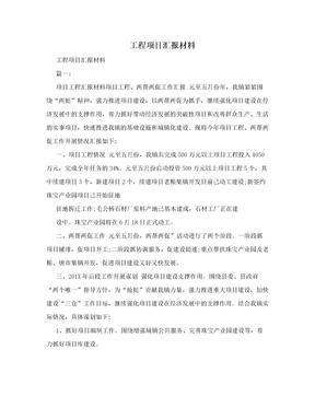 工程项目汇报材料.doc