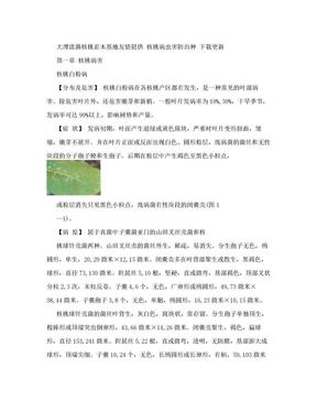 核桃树种植技术1 (2).doc