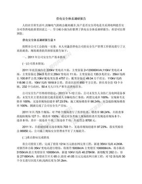 供电安全体系调研报告.docx