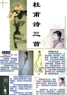 5杜甫诗三首(正).ppt