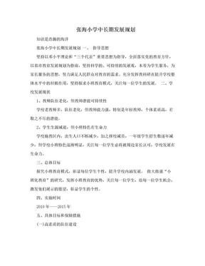 张海小学中长期发展规划.doc