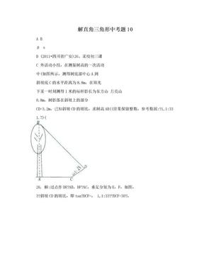 解直角三角形中考题10.doc