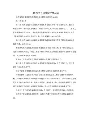 陕西电子招投标管理办法.doc