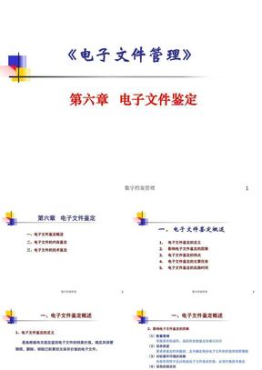 第六章+电子文件管理(鉴定)2010.ppt