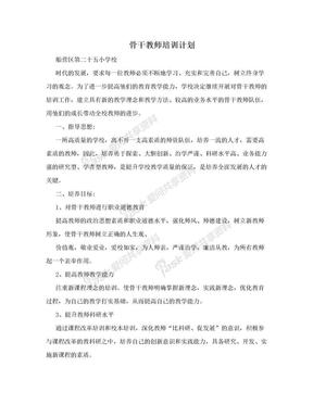 骨干教师培训计划.doc