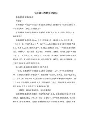 党支部标准化建设总结.doc
