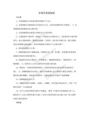 中国共青团知识.doc