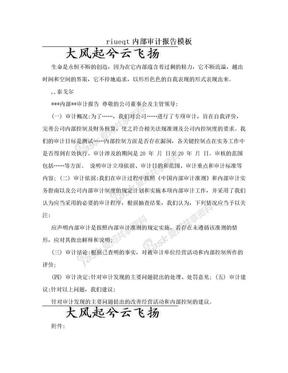 riueqt内部审计报告模板.doc