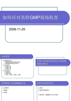 如何应对FDA与EU GMP审计.ppt