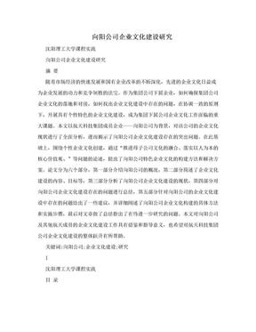 向阳公司企业文化建设研究.doc