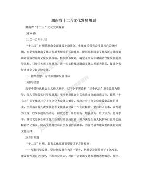湖南省十二五文化发展规划.doc