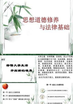 2013版思想道德修养与法律基础绪论.ppt