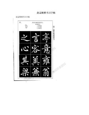 赵孟頫楷书习字帖.doc
