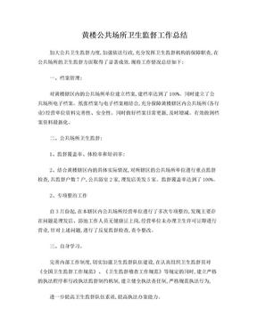 公共场所卫生监督工作总结.doc
