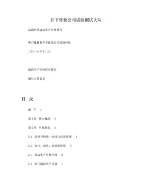 2016年清洁生产审核报告.doc