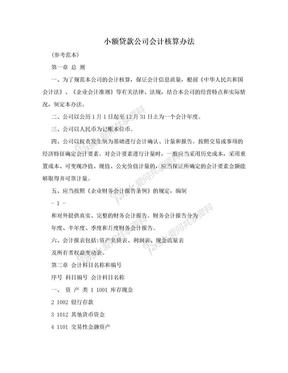 小额贷款公司会计核算办法.doc