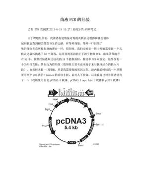 菌落PCR.doc