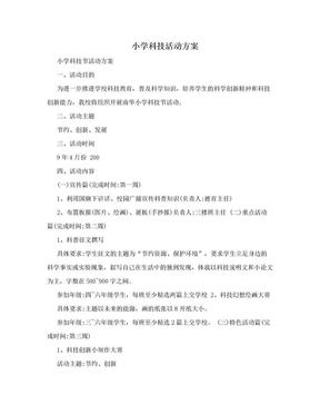 小学科技活动方案.doc