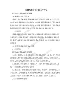 农村精准扶贫识别工作方案.doc
