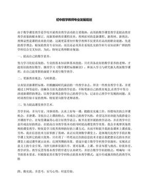 初中数学教师专业发展规划.docx