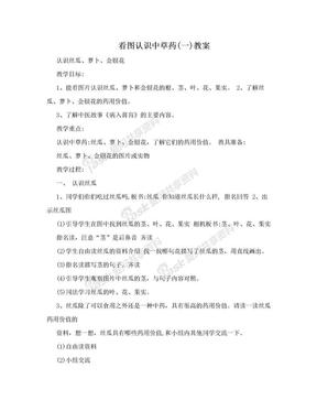 看图认识中草药(一)教案.doc