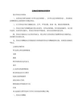 云南省正规劳动合同范本.docx