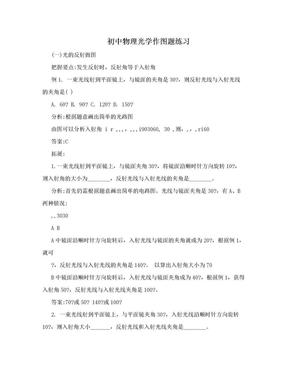 初中物理光学作图题练习.doc