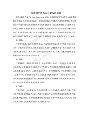 我国超声波水表行业发展研究.doc