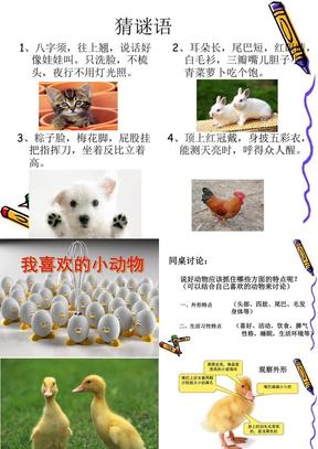 小学四年级作文我喜欢的小动物优秀课件.ppt