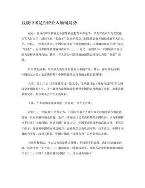 浅谈中国是否应介入缅甸局势.doc