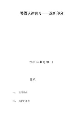 华锡集团车河选矿厂实习报告.doc