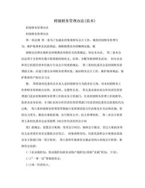 村级财务管理办法(范本).doc