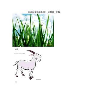 幼儿识字卡片配图一动植物_下载.doc