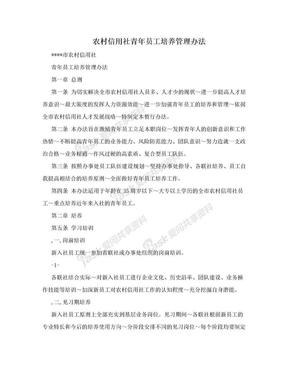 农村信用社青年员工培养管理办法.doc