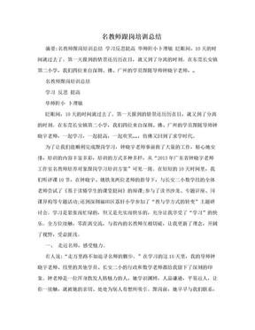 名教师跟岗培训总结.doc