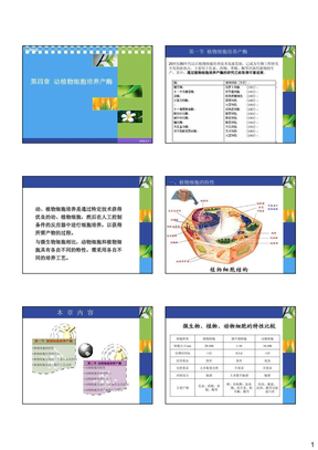 第四章  动植物细胞培养产酶.pdf