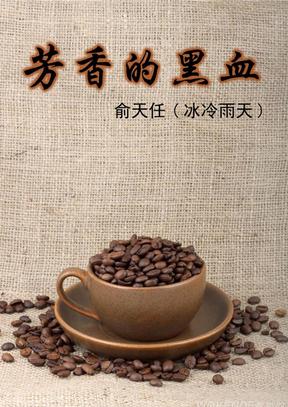 咖啡的历史——芳香的黑血.pdf