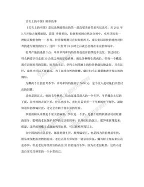 舌尖上的中国解说词.doc