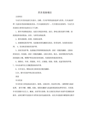 汽车美容项目.doc