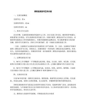 研究生党支书工作计划.docx