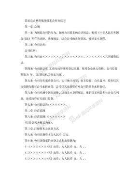 股份制公司合作协议555.doc