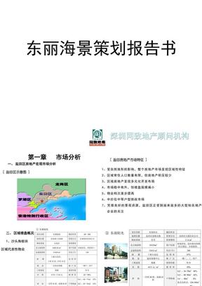 同致-东海丽景项目定位.ppt